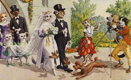 Mainzer cats wedding