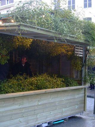Christmas market mistletoe