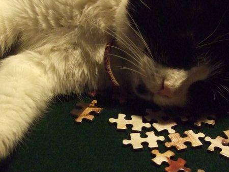 Lady sleeping on jigsaw